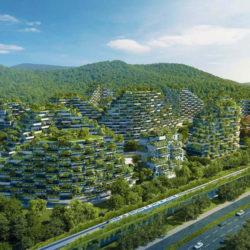 Китайці планують збудувати екологічне лісомісто