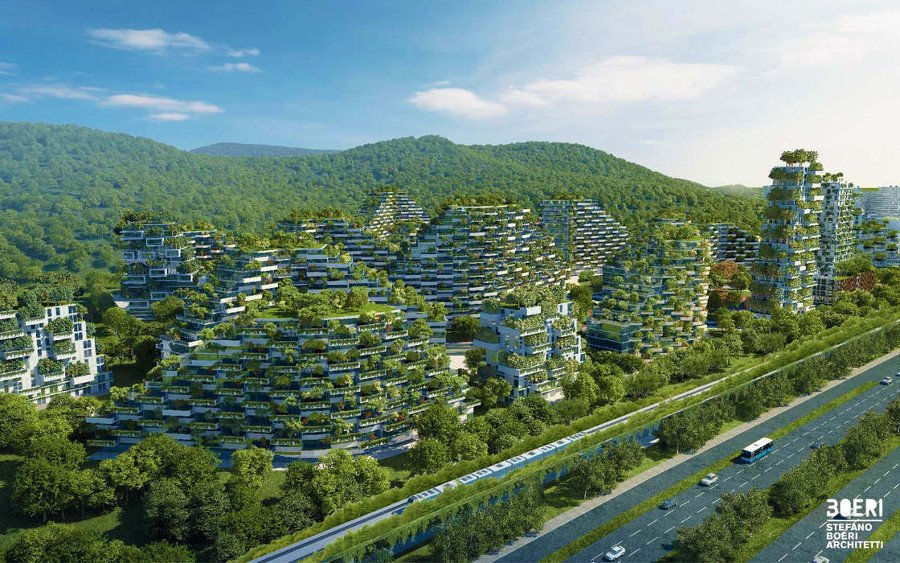 Еклогічне лісомісто - цікавий проект буде втілено у Китаї